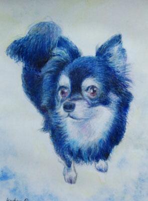 ペットのイラスト犬1